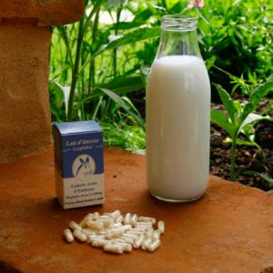 Cures de lait d'ânesse lyophilisé